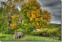 PhotoWalk20111001-166_HDR