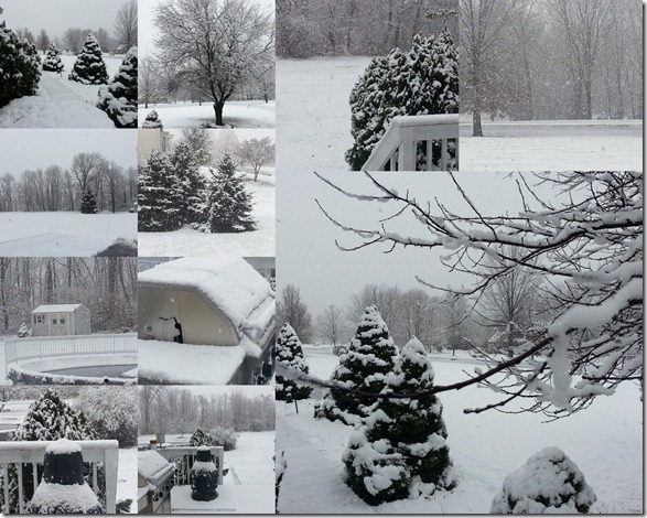 Nov2012SnowCollage