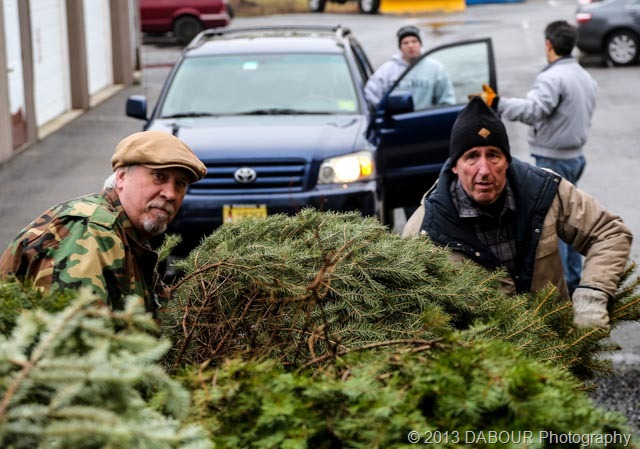 Christmas Tree Recycling Greenwich : Christmas tree recycling dabour photography