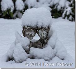 Snow-Nov26-2014-023