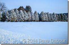 Jan 3 2014 Snow